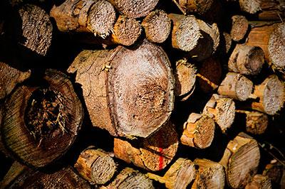 Comercializar madera