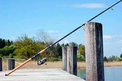 Pesca continental