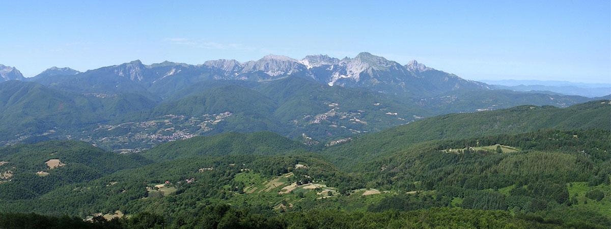 Monte Andaluz